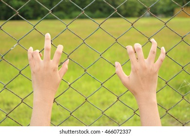 Woman hands on the fence.