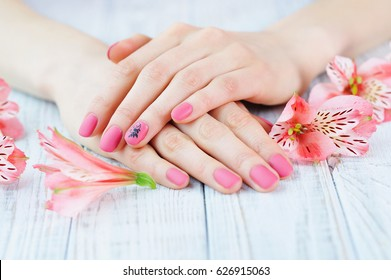 Woman hands with pink matted manicure on finger nails and delicate flowers