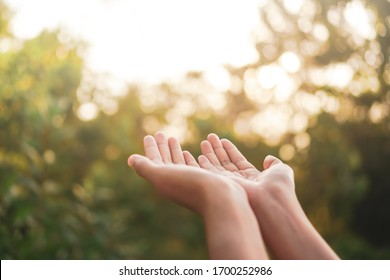 Woman hands place together like praying in front of nature green bokeh and blue sky  background.