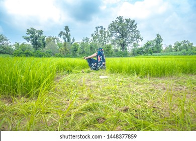 Woman hands is working on rice sprout uproot for rice plantation