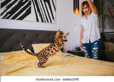 Woman has fun with Bengal cat on yellow bed