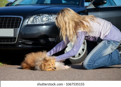 a woman helps an injured dog in front of a car