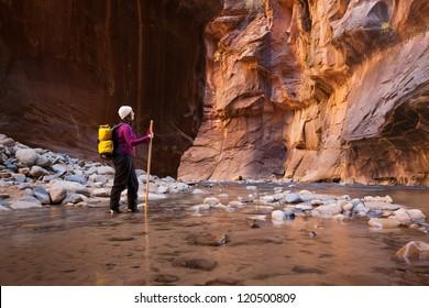 Woman Hiker Enjoying Spectacular Canyon View  (The Narrows in Zion National Park, Utah)