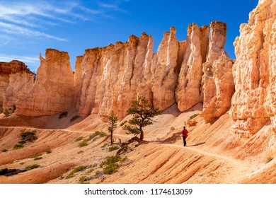 Woman hiker surrounded by large Hoodoo's on Fairyland Loop Trail in Bryce Canyon National Park, Utah USA