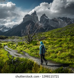 Woman hiker walks on the trail among the burnt trees with snow capped mountains on the background. Torres del Paine National Park, Chilean Patagonia.