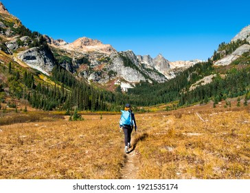 A Woman Hiker Walks Through Spider Meadows on a Sunny Day. Glacier Peak Wilderness, Cascade Mountains, Washington.