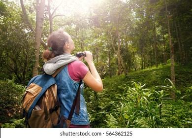 Woman hiker watching through binoculars wild birds in the rainforest. 