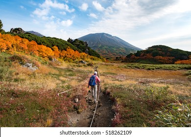 Woman hiking among autumn colors on hiking trail toward Asahidake in Daisetsuzan, Hokkaido, Japan.