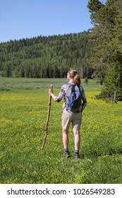 woman hiking in meadow with yellow wildflowers