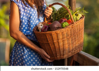 Woman holding a basket with healthy Fresh Organic Vegetables. Harvest.