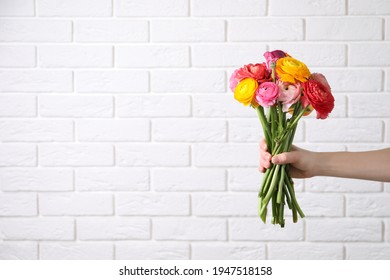 Woman holding beautiful ranunculus flowers near white brick wall, closeup. Space for text
