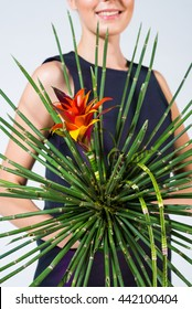 woman holding big tropical flower, red, cactus, plant