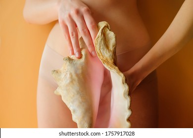 woman holding a conch shell near her underwear panties. women's health gynecology concept. nude beige color background. symbol of female private parts genitals vulva vagina. birth planning sex life
