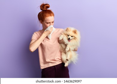 woman holding a dog which is stinking, close up portrait, isolated blue background. girl has found stray animal which has bad smell. copy space
