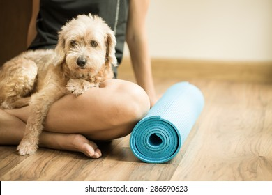 woman holding dog in yoga class