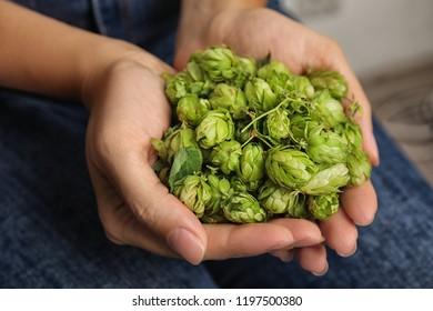 Woman holding fresh green hops, closeup. Beer production