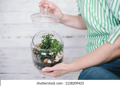 Woman holding hands mini succulent garden in glass terrarium.Florarium with succulent