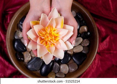 Woman holding a lotus flower
