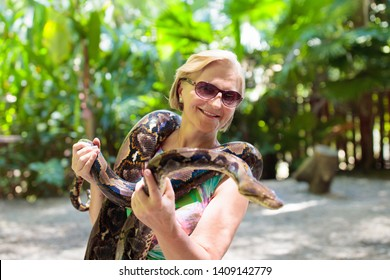 Woman holding python snake in tropical zoo. Lady watching exotic reptile. Female tourist with snakes on trip to safari park. People learning to overcome fear and phobia. Rainforest animals.
