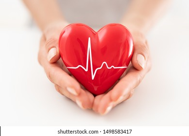The woman is holding a red heart. Concept for charity, health insurance, love, international cardiology day.