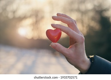 Woman holding red heart in her hands. Organ donation, charity, health care, cardiology, health insurance, love and family concept.