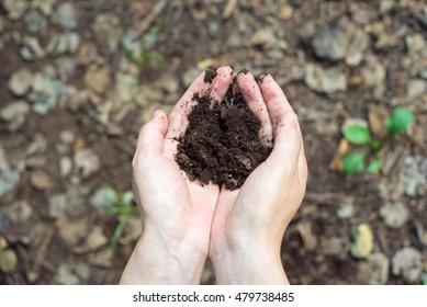 Woman holding soil