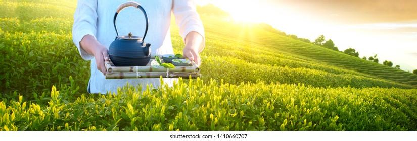 Woman holding teapot cups in tea garden,tea seving concept