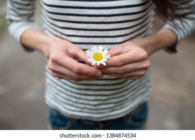 Woman holding white margaret flower