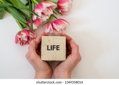 Woman holding a wooden cube whit the inscription: Life, with pink tulips on the white background. Safe life. Protection of life. Safe family. Pro life. Copy space.