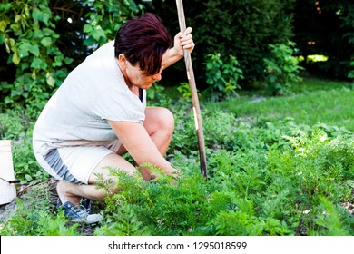 A woman holding a wooden stick. Hardworking mother cultivating the topsoil and removing weeds. Preparing the land for planting in spring. Gardening and farming activity.