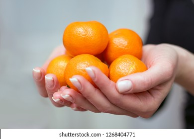 A woman holds in her hand the orange fruits of mandarin