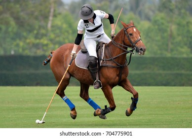 Woman horse polo player use a mallet hit ball in tournament.