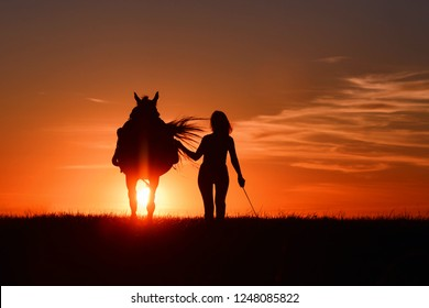 Woman and horse walk in field with red rising sun on horizon. Beautiful Idyllic and romantic sunset background with equine and girls silhouette on horse hiking