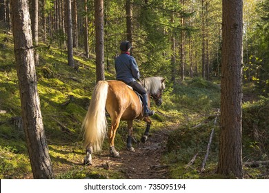 Woman horseback riding in forest path
