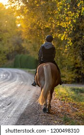 Woman horseback riding on country road