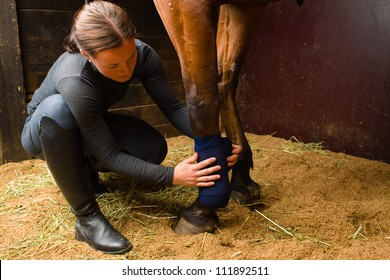 Woman installs bandages for the horse in the stall