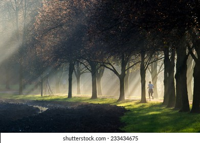 Woman jogging on a sun ray lit park path along the beautiful avenue of trees while the sun rays can be clearly seen through the misty fog.