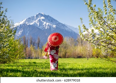 Woman in kimono with red umbrella in the garden with cherry blossom at mountain background