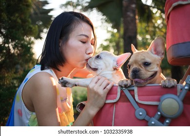 Woman kisses french bulldog puppy is pet stroller under evening sun's rays in a park.