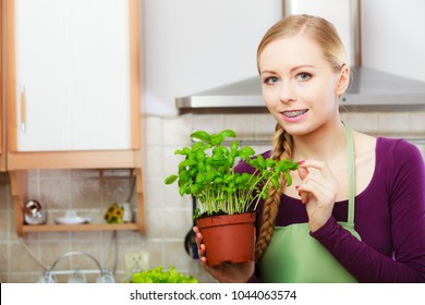 Woman in kitchen holding green fresh basil in pot. Young housewife preparing to cooking. Healthy eating, cooking, vegetarian food, dieting and people concept.