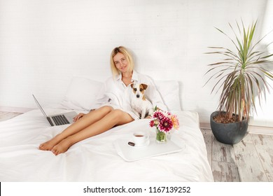 Woman with a laptop working in bed. Female with pet have breakfast at bedroom