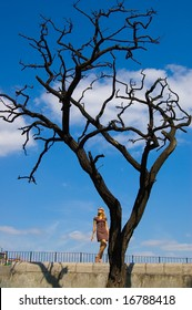 Woman and leafless dry tree