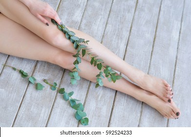 Woman legs with beautiful olive green pedicure on feet and eucalyptus branches