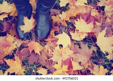 woman legs in black shoes against autumn leaves background