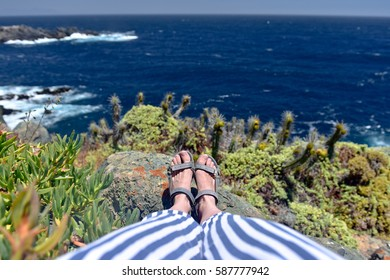 Woman legs on the rocks  in national park with different kind of cactuses and bushes, Chile