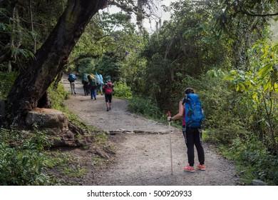 Woman looking step forward for Inca Trail to reach Machu Picchu, Cusco - Peru