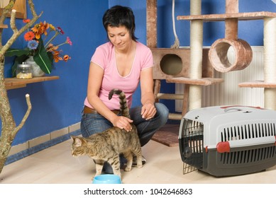 Woman looks after cats in the cats hotel
