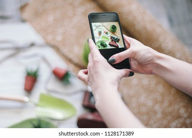 Woman makes photos of succulents with her smartphone. Woman is taking a photo of the green plants,concept.