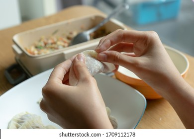 Woman making gyoza. wraping traditional japanese dumplings with two hand.