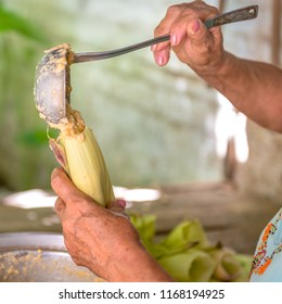 Woman making tamales in Cuba, the tamal  is a traditional Mesoamerican dish made of corn dough